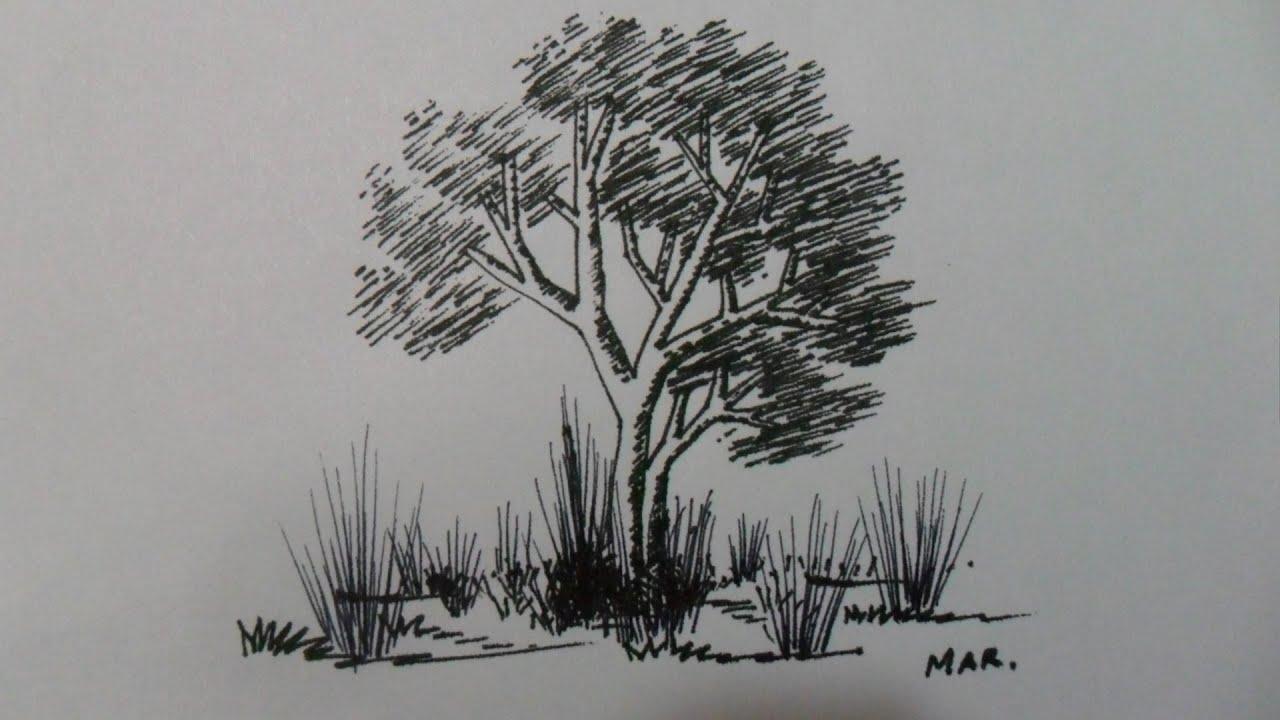 Dibujo De Lineas Paisaje: COMPLEMENTO DE LECCIÓN Nº 1. (3 / 3) SOLO RECTAS, COMO
