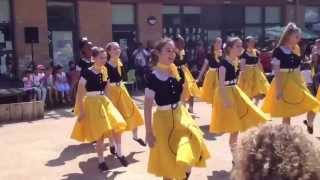 Broadfields Fete 50s dance