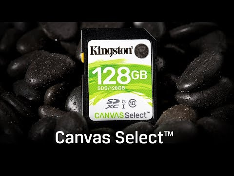 UHS-I Speed Class 1 SD Cards - Canvas Select - Kingston Technology