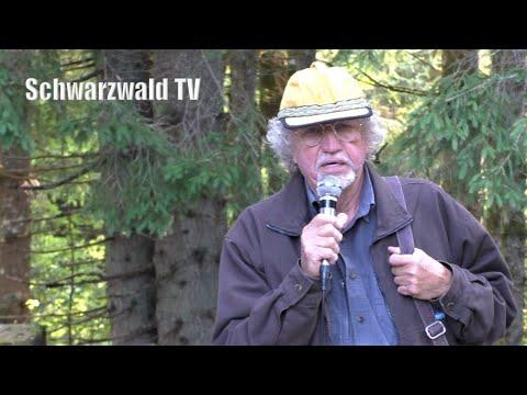 Download 🚨 Schwarze Säge Görwihl: Michael Peter kritisiert die hohe Wasserentnahme der Schluchseewerke