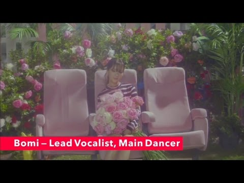 GET TO KNOW: APINK (Members, looks, positions, voices) ONLY ONE + BOOM POW LOVE