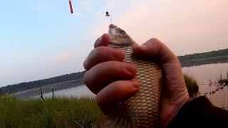Карась на каждом забросе Супер рыбалка на маховую удочку