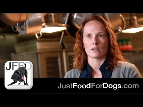 The Specialists: Food Allergies In Dogs   JustFoodForDogs