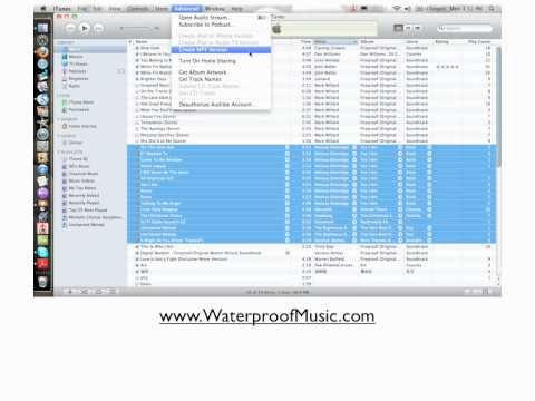 How Can I Transfer My iPod Music To My Swimp3 Waterproof MP3 player?