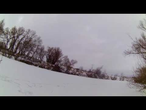 Охота на Косулю,загонная охота на косулю,Сибирская косуля
