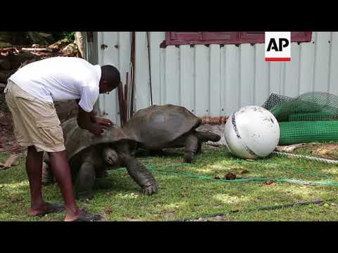 REPLAY Seychelles protects its marine life in exchange for debt relief