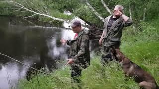 Кострома.Рыбалка на таежной речке.