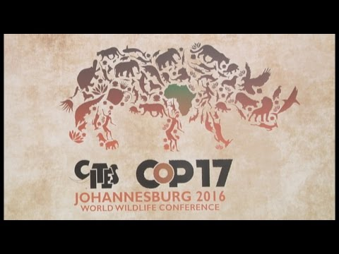 President Jacob Zuma addresses opening of 17th Meeting of the Conference of the Parties