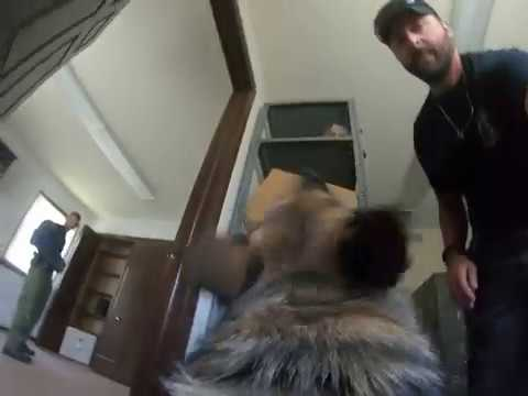 Tallmadge police dog Axel searches a house and finds a suspect
