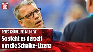 Peter Knäbel verrät: So steht es derzeit um Schalke