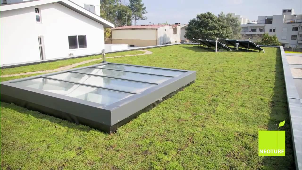 Neoturf Extensive Sedum Green Roof Mov Youtube