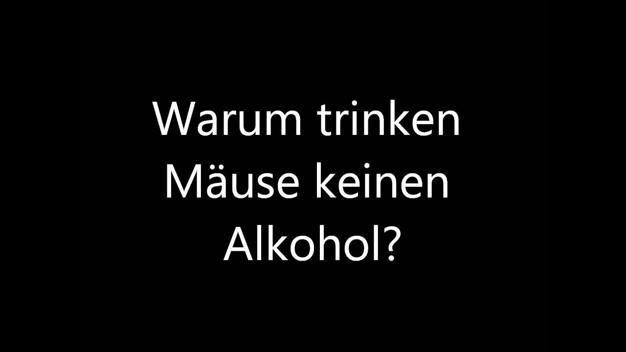 Witz h schen und jens warum trinken m use keinen - Lustige bilder alkohol ...
