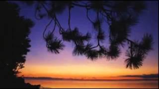 Time to Say Goodbye (Con Te Partiro) - Richard Clayderman - Piano