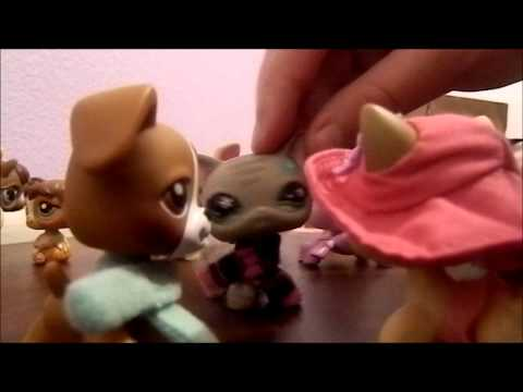 Littlest Pet Shop :Alice In WonderLand (part 1)