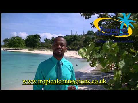 What Jamaica is saying about Tropical Connections