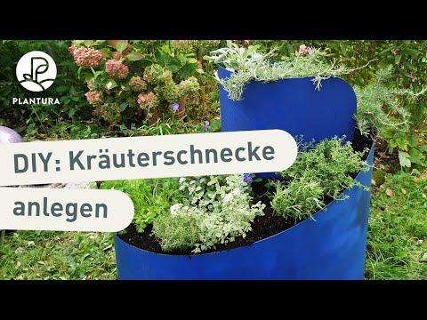 kräuterschnecke richtig bepflanzen