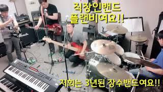 플랜비 밴드 소개