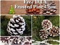 Frosted Pine Cones | Free D.I.Y
