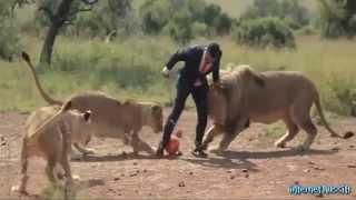 Смешное видео про животных.Смотреть всем.