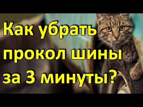 Электробензонасос ВАЗ 2110 (пр-во ДК) - YouTube