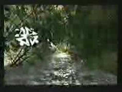 Sentimiento Original lyrics by Gondwana - original song ...