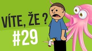 #29 ● VÍTE, ŽE...?