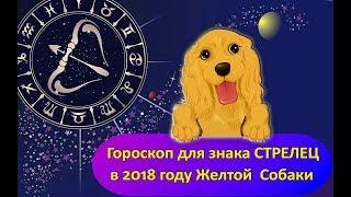 Гороскоп знака Зодиака СТРЕЛЕЦ на 2018 год Желтой Собаки