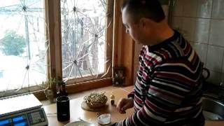 видео Грибной порошок