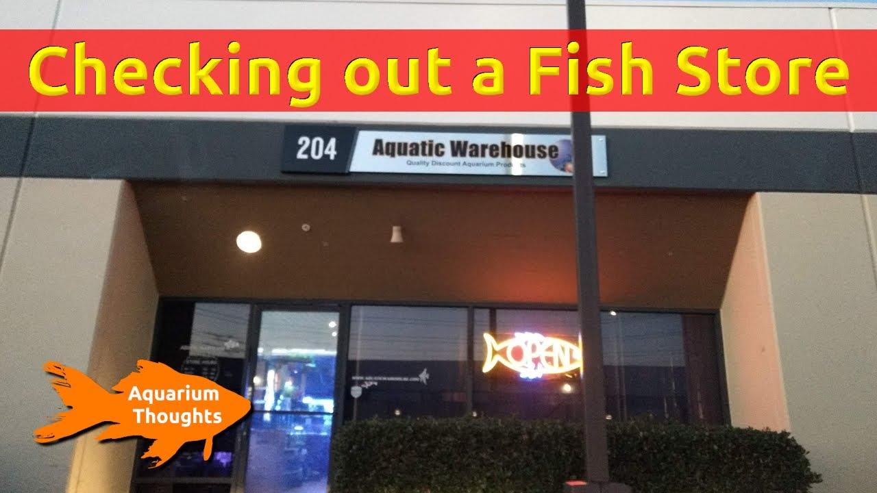 A quick walk-through tour of Aquatic Warehouse in San Diego - Aquarium  Thoughts