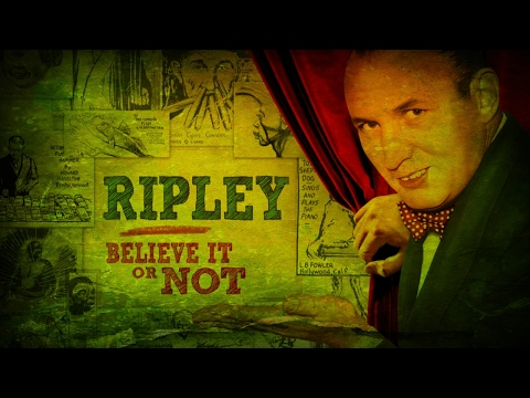 Ripleys Believe it or Not Museum night 2