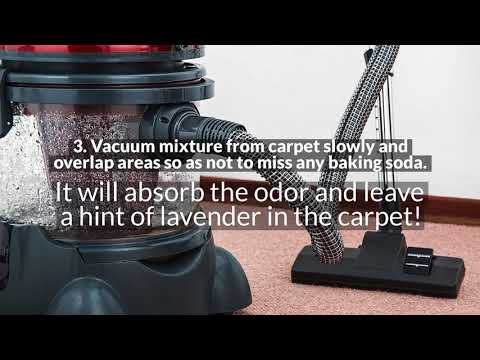 How to Freshen Up Smelly Carpet: Carpet