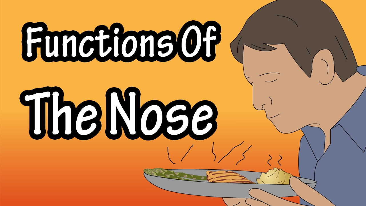 how to get out of nose