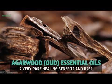7-benefits-of-the-truly-rare-agarwood-essential-oil