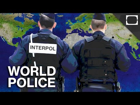 What Is Interpol?