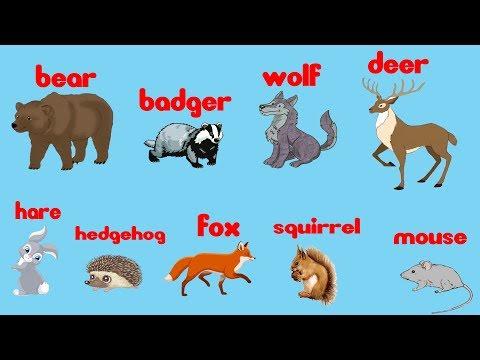 Английский для детей ЛЕГКО И ПРОСТО | Учим животных на английском языке |  Дикие животные для детей