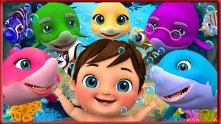 🔴 Baby Shark Dance   Shark Dance    Sing and Dance!   Shark Songs     Banana Cartoon [HD]