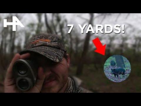 Wild Hog Kill Shot: Ultra-Slow Motion In 4K