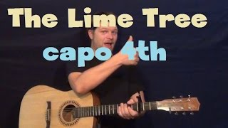 The Lime Tree (trevor Hall) Easy Strum Guitar Lesson How To Play Tutorial