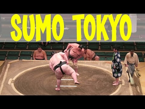 SUMO WRESTLING Tournament | Tokyo, Japan