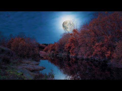 Relaxing Japanese Music - Moonlit Sky
