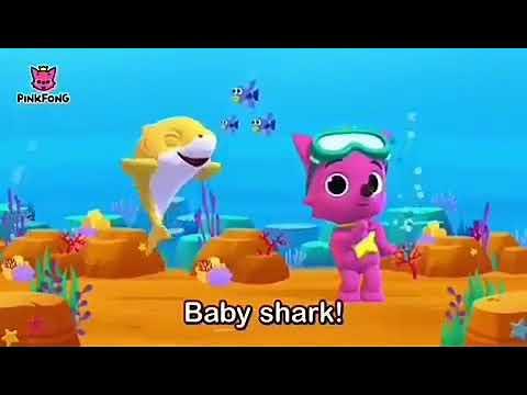 Ping Fong Baby Shark