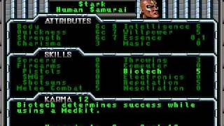 LGWI - Shadowrun Bonus (What if...)