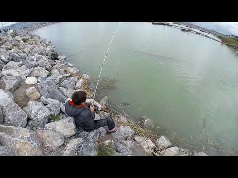Angling In Action UTAH LAKE