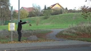 Pyro One feat. Kaput Krauts: Endhaltestelle