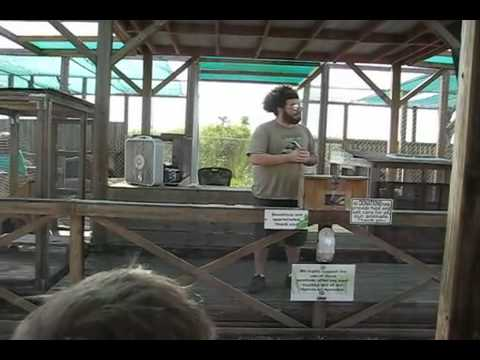 Wildlife Education Show by Brett
