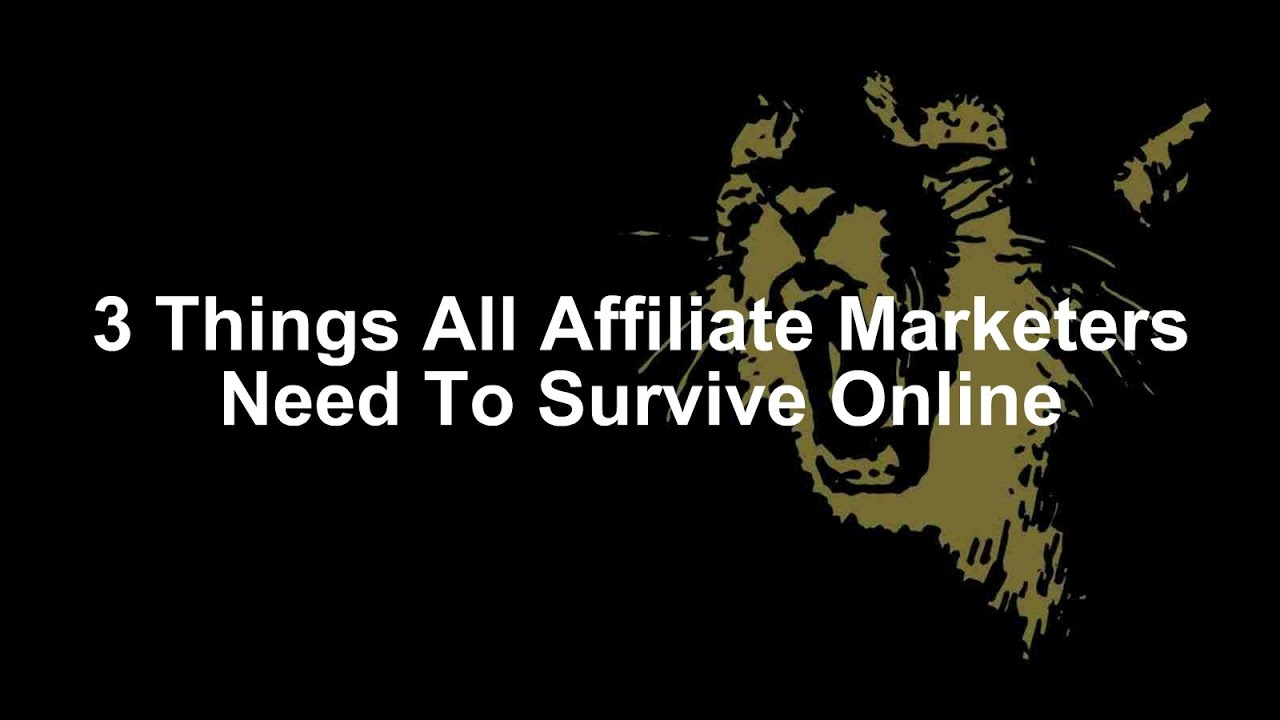 Image result for 3 Things All Affiliate Marketers Need To Survive Online