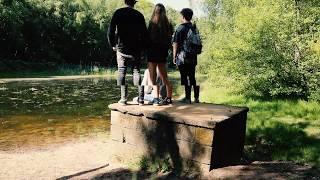 Kids - MGMT Music Video