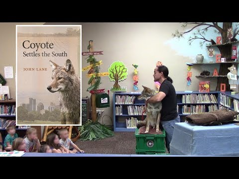 Coyote Named Scooter - 117 - Presentation At Library