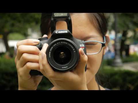 Community Artist Collective - Columbia University