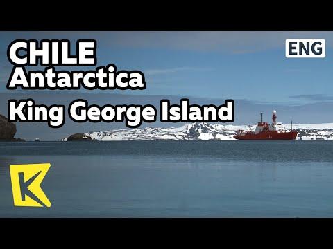 【K】Chile Travel-Antarctica[칠레 여행-남극]연구기지가 있는 킹조지 섬/King George Island/Snowmobile/Russian Church